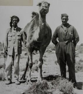 Antonio Grassi, Africa 1940