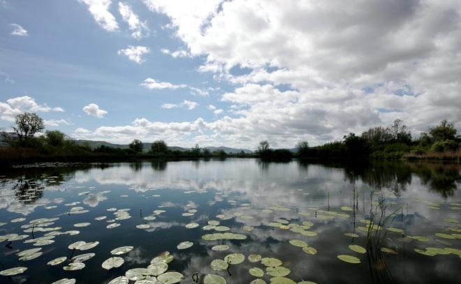 Lago-lungo