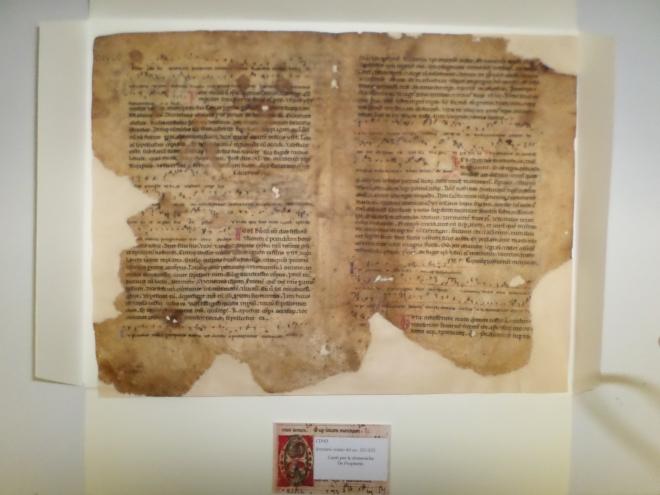 Breviario con notazione del XII-XIII sec. proveniente dal volume Civilia 63 (1547 feb. 9 – giu 29), Archivio Storico Comunale di Casperia