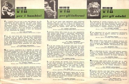Archivio di Stato di Rieti, Archivio comunale di Rieti, Carteggio amministrativo, Rieti, Festa dell'uva, Pieghevole informativo, Anni '50