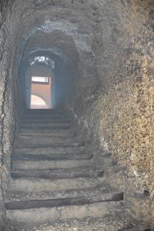 Archivio privato di Piero Luperto, Castelnuovo di Farfa, Museo dell'Olio della Sabina.